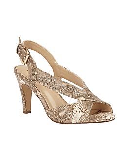 Lotus Paloma Shoes Standard D Fit