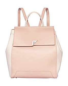Fiorelli Barrington Backpack