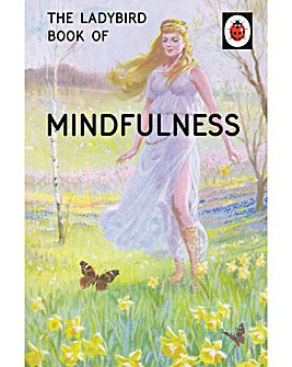 The Ladybird Book of The Mindfulness