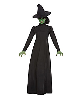 Halloween Long Witch Costume