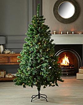 Prelit Nordic Fir Tree