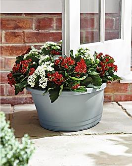 Doorstop Planter