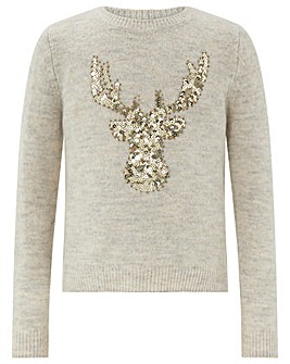 Monsoon Dasha Reindeer Jumper