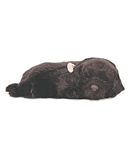Tactile Pet Black Labrador