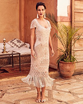 Joanna Hope Beaded Fringe Lace Dress