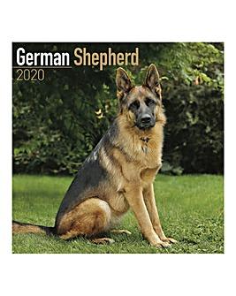 German Shephard 2020 Dog Calendar