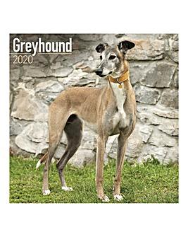 Greyhound 2020 Dog Calendar