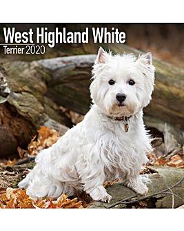 Westie 2020 Dog Calendar
