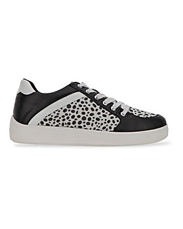 Farren Animal Print Trainers Extra Wide Fit