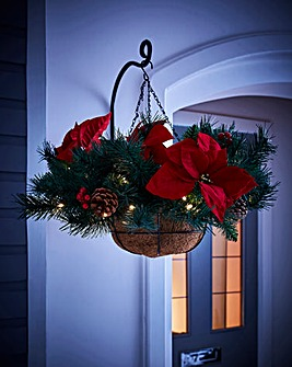 Poinsettia Hanging Basket
