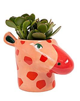 Giraffe Plant Pot