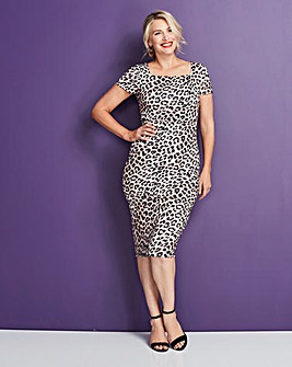 Leopard Print Shape and Sculpt Dress