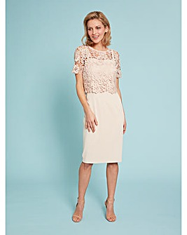 Gina Bacconi Coralise Lace Overtop Dress