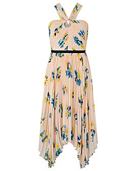 Monsoon Margarita Print Dress