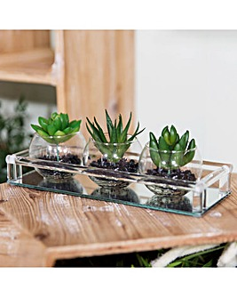 Set of Artificial Plants on Mirror Base