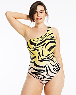 Strappy Back Ombre Zebra Swimsuit