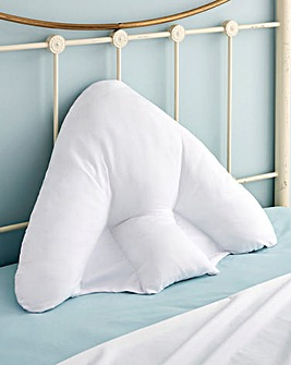 Batwing Pillow And Case