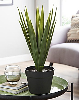 Artificial Palm Leaves in Black Pot