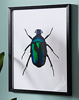 Green Beetle Wall Art