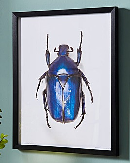 Blue Beetle Wall Art
