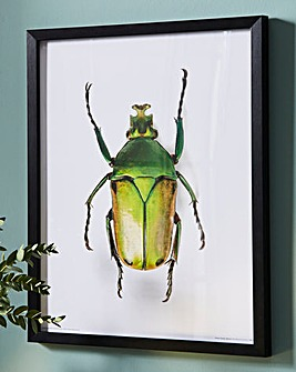 Yellow Beetle Wall Art