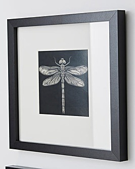 Barry Goodman Dragonfly Wall Art
