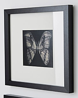 Barry Goodman Moth Wall Art