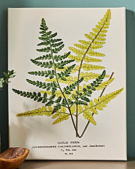 Piddix Gold Fern Wall Art