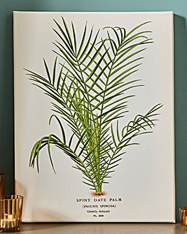 Piddix Spiny Date Palm Wall Art