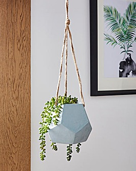 Duck Egg Hanging Planter