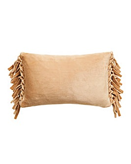 Silky Tasselled Cushion