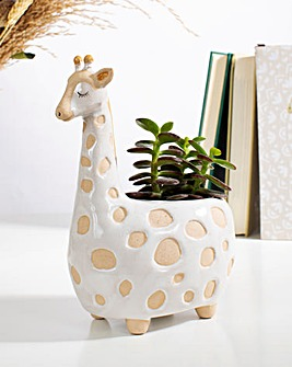 Sass & Belle Girafffe Planter