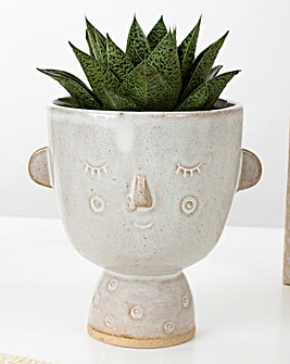 Sass & Belle Face Planter