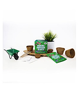 Dancing Dinosaur Sow & Grow Kit