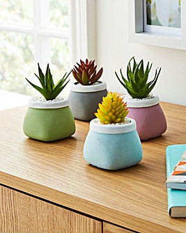 Set of 4 Succulent Square Pot