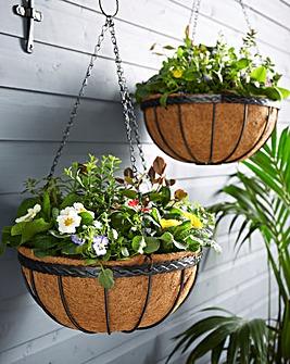 Set of 2 Saxon Hanging Baskets