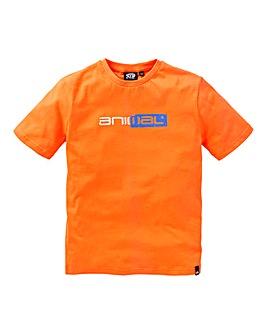 Animal Boys Sketchy S/S T-Shirt