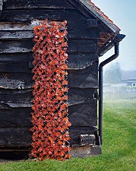 Red Acer Leaf Trellis 180 x 60 cm