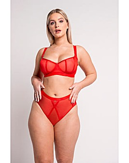 Scantilly Sheer Chic Brief