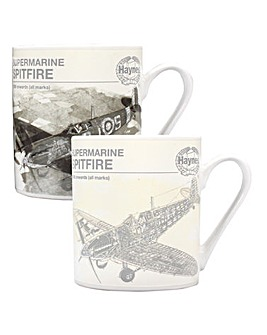 Haynes Heat Changing Spitfire Mug
