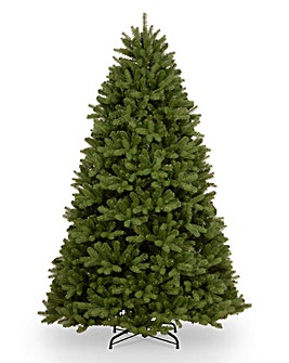 National Tree Newberry Spruce Tree