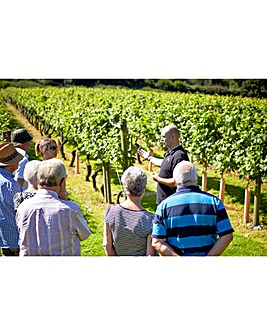One Night Vineyard Tour & Tasting Break