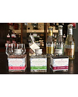 Online Tutorial Home Gin Tasting Kit