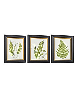 Set of 3 Alpini Framed Prints on Glass