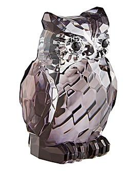 Two Tone Acrylic Owl