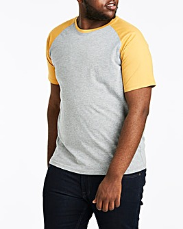 Mustard/Grey Raglan T-Shirt