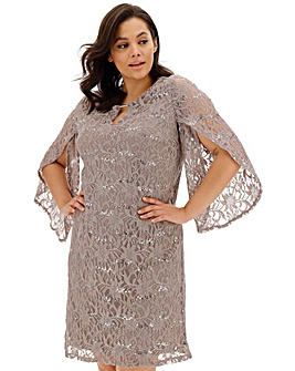 Joanna Hope Sequin Stretch Lace Dress