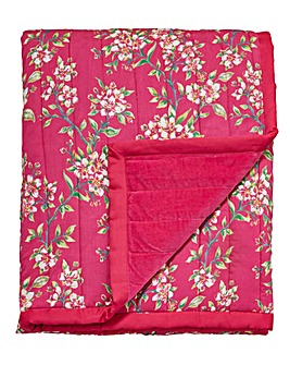 Joe Browns Quilted Throw