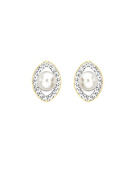 9Ct Gold Pearl Elliptic Studs