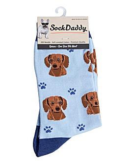 Jack Russell Dog Socks